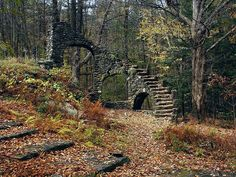New Hampshire Forests, Madame Sherri Forest