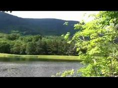 Mint Springs Park - YouTube