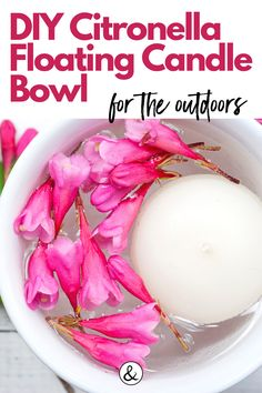 Citronella essential oils is great for deterring pests and other outdoor annoyances. Make your own citronella floating candle bowls. Organic Living, Natural Living, Citronella Essential Oil, Essential Oils, Floating Candles, Homemade Beauty Products, Home Remedies, Bowls, Crafts For Kids