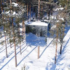 Treehotel in Sweden - Reisen urlaub Places Around The World, Oh The Places You'll Go, Cool Places To Visit, Vacation Places, Dream Vacations, Hotels, Destination Voyage, Beautiful Places To Travel, Future Travel