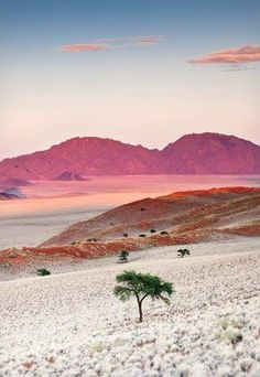 Nambia, Africa.  Go to www.YourTravelVideos.com or just click on photo for home videos and much more on sites like this.