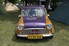 Deep gold and majestic purple: this Classic Mini boasts a color combination fit for a king. ahem...a QuEEN