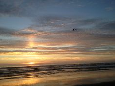 My happy place My Happy Place, Beaches, Celestial, Sunset, Travel, Outdoor, Voyage, Outdoors, Viajes