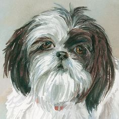 Shih Tzu Print of Watercolor Dog Painting by EdieFaganArt on Etsy. Payton loves her pet portrait - she's the perfect puppy! #shihtzu
