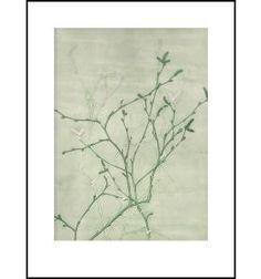 Pernille Folcarelli - Birch Green 30x40