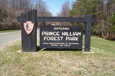 Prince William Forest Park - Virginia