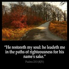 """""""CHRIST RESTORES, RENEWS, AND GUIDES YOU IN THE RIGHT PATH""""  Psalms  23:3 He restoreth my soul: he leadeth me in the paths of righteousness for his name's sake."""