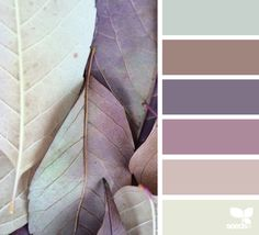 { leaf tones } - https://www.design-seeds.com/seasons/autumn/leaf-tones6