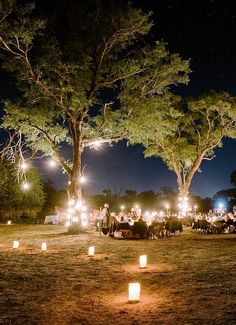 Rustic Country Weddings Kyly Zakheim and Ryan Rabin marry in a magical safari wedding in South Africa. - The bride wore Vera Wang to marry her groom in the bush at Londolozi, a family-run game reserve in Kruger National Park