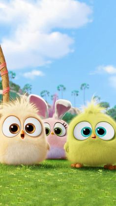 Hatchlings Angry Birds Hd Wallpaper [1920x1080] Need # ...