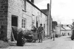 Netmaking in Uploders, Dorset, 1948