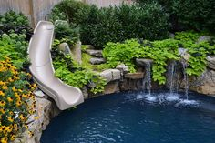 want to see an awesome pool and spa in a small backyard, landscape, outdoor living, ponds water features, pool designs, spas, Moss rock waterfall with sweet potato vine