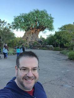 Disney Musings: My First Solo Walt Disney World Trip : Day 4