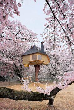 Deze charmante boomhut doet bijna magisch aan Roomed | roomed.nl