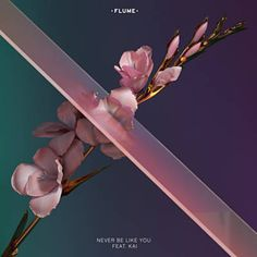 Never Be Like You Lyrics By Flume Ft. Kai New Never Be Like You Artists: Flume Ft. Kai Never Be Like You Music Lyrics [Verse What I would do to take away This fear of being loved, allegiance to the pain Now I f*cked up and I miss you Never be like you