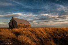 salt marsh at sunset | Tantramar_Marsh_TWJ_salt_marsh_sunset_barn_20090911_27.jpg