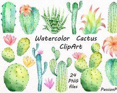 Divertidos Cactus en macetas. Pintado a mano 14 por OctopusArtis