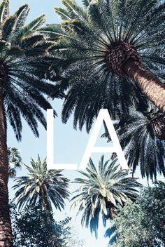 #palm trees #la