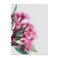 Flowering gum on grey background Limited Edition Print Australian Wildflowers, Australian Native Flowers, Australian Art, Mural Wall Art, Wall Art Prints, Flower Prints, Flower Art, Tropical, Native Art
