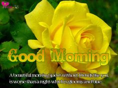 These are High Resolution Good Morning Pictures with Text, gud morning, good day, good images, good morning, good morning be,good morning as, these are some keywords of this post  happy morning, good am,  good morning a, and good morning.