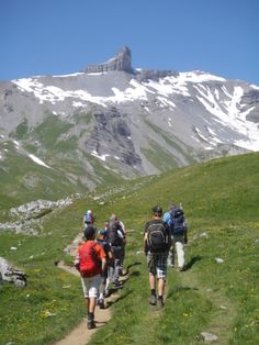 Tour du Chavalard #chavalard #naturelovers #nature #mountain #randonnée #fullytourisme #sentier #balade Mount Rainier, Land Scape, Tour, Switzerland, Nature, Photos, Hiking, Camping, Mountains