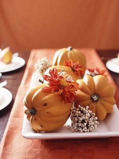 Create a stress-free centerpiece by setting several pumpkins or gourds on the table. This arrangement displays them on a long white platter, but a low basket or tray would work just as well. Garnish with a few leaves, berry clusters, or flowers to add a bit of color and texture.