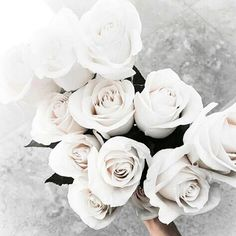 Forever in love with white flowers