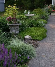 Driveway Garden through the Seasons - Perennials Forum - GardenWeb