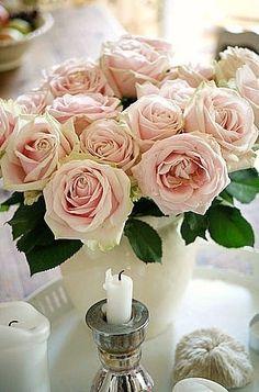 luna mi angel en We Heart It. http://weheartit.com/entry/70655411/via/Luna_mi_Angel