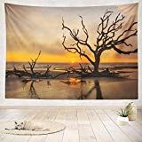ASOCO Tapestry Wall Handing and Tree Ocean Beach Sunrise Island Beach Branch Clouds Coast Environment Wall Tapestry for Bedroom Living Room Tablecloth Dorm Inches - Driftwood 4 Us Ocean Beach, Beach Sunrise, Driftwood Furniture, Ocean Shores, Family Room Decorating, Dream Furniture, Island Beach, Tapestry Wall, Seaside