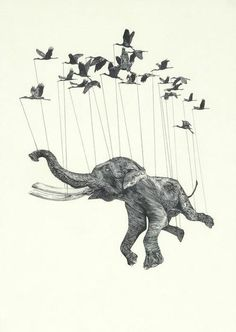 I was looking through an Illustration book and I came across the work of Stuart Patience. He is an illustration and animation gradu. Art And Illustration, Illustrations Posters, Elephant Illustration, Animal Illustrations, Street Art, Elephant Love, Flying Elephant, Elephant Art, Arte Sketchbook