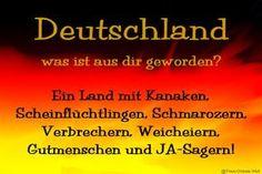 #Politikversagen Deutschland, was ist aus dir geworden? Ein Land mit Kanaken, Scheinflüchtlingen, Schmarotzern, Verbrechern, Weicheiern, Gutmenschen und JA-Sagern!
