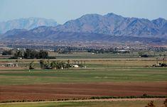 As drought worsens, California farmers are being paid not to grow crops Colorado River, Fields, Golf Courses, Farmers, California, Environmental News, Kamala Harris, Times, Joe Biden