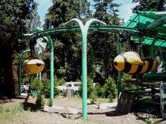 essay on amusement park for kids