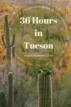 If you only have 36 hours in Tucson, use this hour by hour itinerary for fun in the Arizona desert. We'll show you what to do, where to eat and how to have fun in Tucson, Arizona.