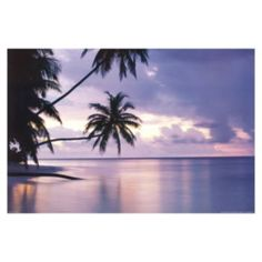 Art.com Tropical Sunset Wall Art Print