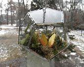 Hanging Glass Terrarium. $44.00, via Etsy.