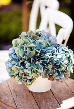 Blue-purple-green antique hydrangeas...