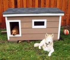 Dakota and Roxie - Washington:  several years of being tried and tested, this dog house has been proven to be the most comfortable and the safest home you can build for your beloved dogs.