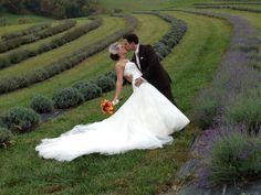 Bride & Groom photo at Destiny Hill Farm Wedding