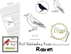 Welcome to Week 12 in my FREE Bird Notebooking Weekly Series!  This week we are notebooking with Ravens. Why not get your FREE Bird Notebooking Raven Pack today! http://enchantedhomeschoolingmom.org/2016/06/bird-notebooking-pages-weekly-series-free-raven-pack/?utm_campaign=coschedule&utm_source=pinterest&utm_medium=Jill%20%7BEnchanted%20Homeschooling%20Mom%7D&utm_content=Bird%20Notebooking%20Pages%20Weekly%20Series%20FREE%20Raven%20Pack