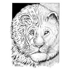 Phase Lion Scan by winkcisco863