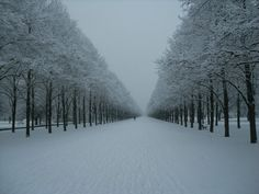 Georgengarten Hannover Germany, it was a rainy spring day when I was here. It looks beautiful with the snow.