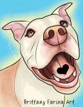 1000 images about animal art by brittany farina on pinterest boxers