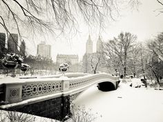 central park wallpaper free hd widescreen - central park category