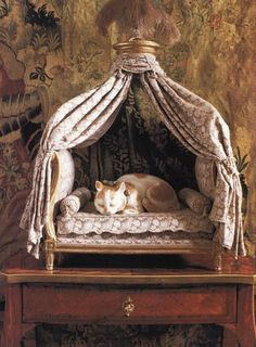 a handfull of period-inspired pet beds included: 'Spoiled Pets: One Of A Kind Pet Gifts & Furniture' Pet Beds, Dog Bed, Crazy Cat Lady, Crazy Cats, Animal Gato, 1 Gif, Pet Furniture, Dog Houses, Pet Gifts