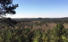 Randonnée en IDF dans la forêt de Fontainebleau  #Fontainebleau #randonnée #Paris #Ile-de-France #France