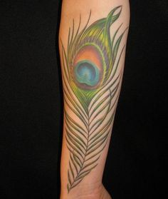 Peacock Feather Tattoo Bkgjq 5965