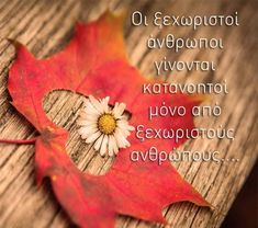 Greek Quotes, Letters, Messages, Letter, Lettering, Text Posts, Text Conversations, Calligraphy