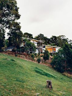 The Tinbeerwah house and studio keep a low profile among the site's eucalyptus trees.